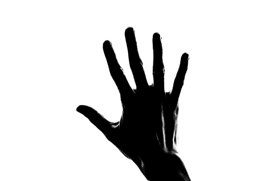 palmo vs pugno